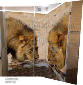 tygrys w łazience