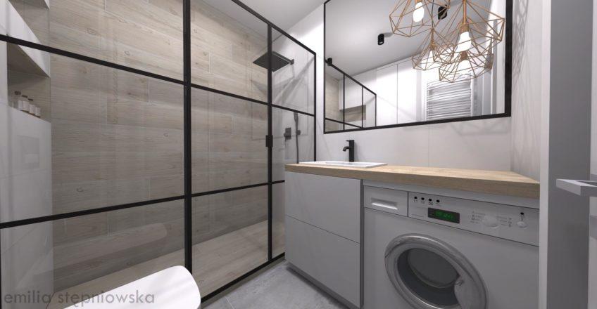 Drzwi prysznicowe loft